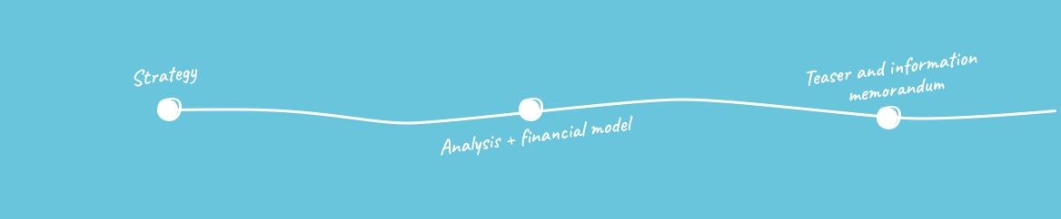 1. Preparing a company for the investor acquisition process